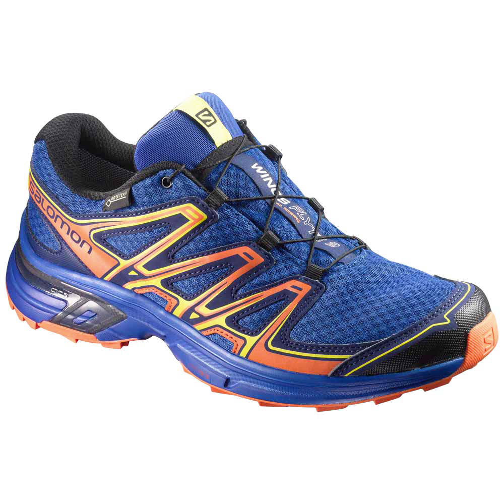 Salomon Wings Flyte 2 Gtx Chaussure Trail Homme  - Chaussures Chaussures-de-running Homme