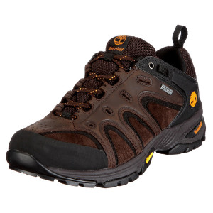Ledge Low Lthr Gtx Chausure Homme
