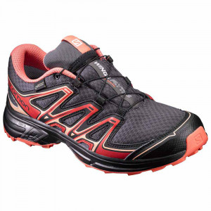 Wings Flyte 2 Gtx Chaussure Trail Femme
