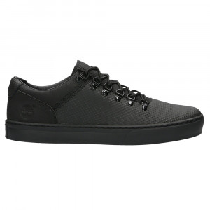 Adv 2.0 Cupsole Alpine Ox Chaussure Homme