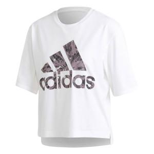 Iwd Univ T-Shirt Mc Femme